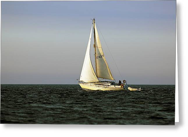 Choppy Water Greeting Cards - Sailing by Greeting Card by Grant Glendinning