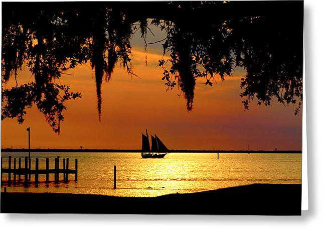 James R Granberry Greeting Cards - Sailing Destin Greeting Card by James Granberry