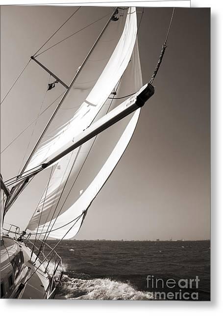 Charleston Greeting Cards - Sailing Fast Charleston South Carolina Greeting Card by Dustin K Ryan