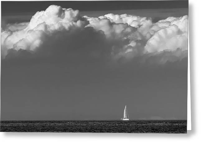 Sailing Home Greeting Card by Wim Lanclus