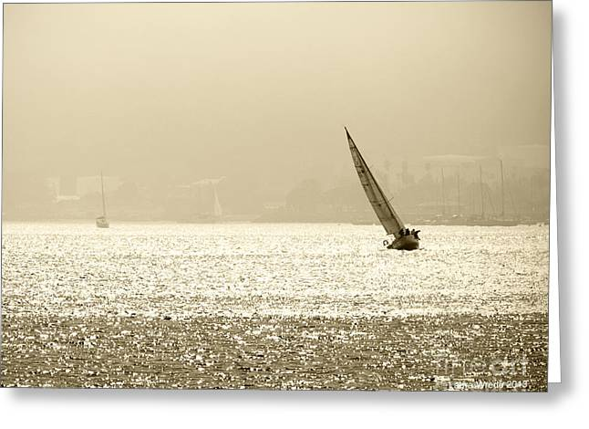 Sailing in San Diego Harbor Greeting Card by Artist and Photographer Laura Wrede