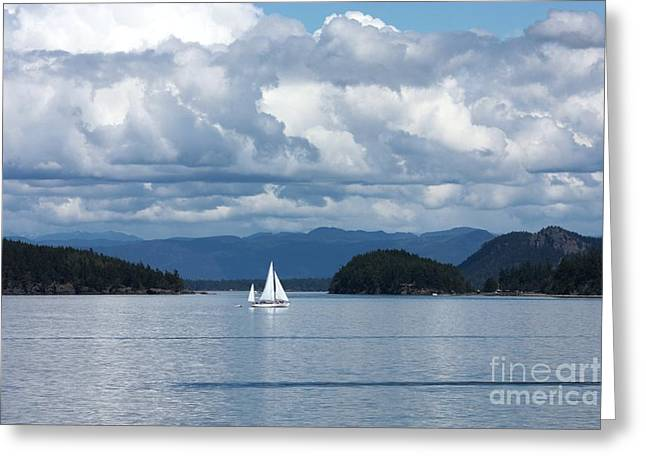 Sailing In The San Juans Greeting Card by Carol Groenen