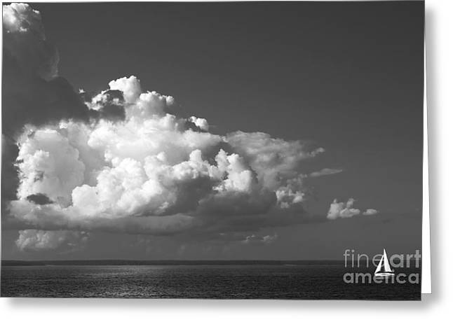 Courage Greeting Cards - Sailing into Storm Greeting Card by Charline Xia