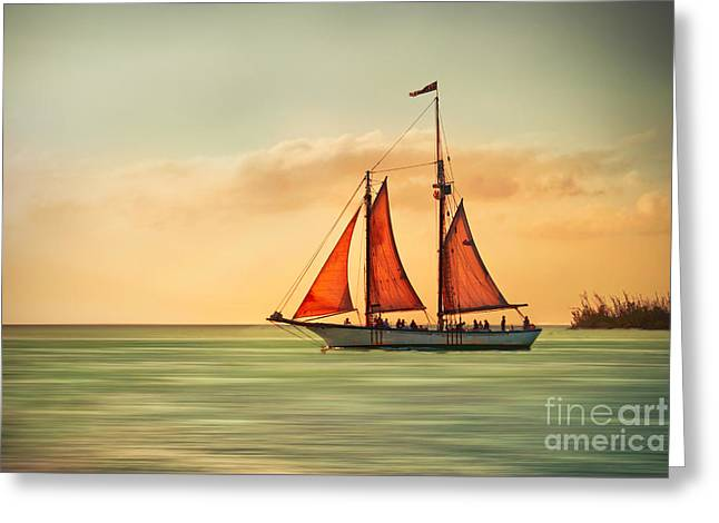 Hannes Cmarits Greeting Cards - Sailing Into The Sun Greeting Card by Hannes Cmarits
