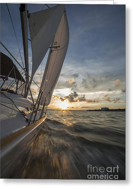 Water Flowing Greeting Cards - Sailing Into the Sunset Charleston SC Greeting Card by Dustin K Ryan