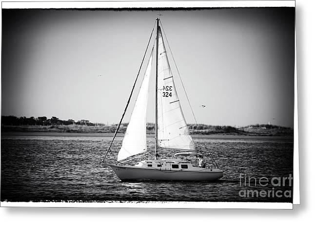 Sailboats In Water Greeting Cards - Sailing LBI Greeting Card by John Rizzuto