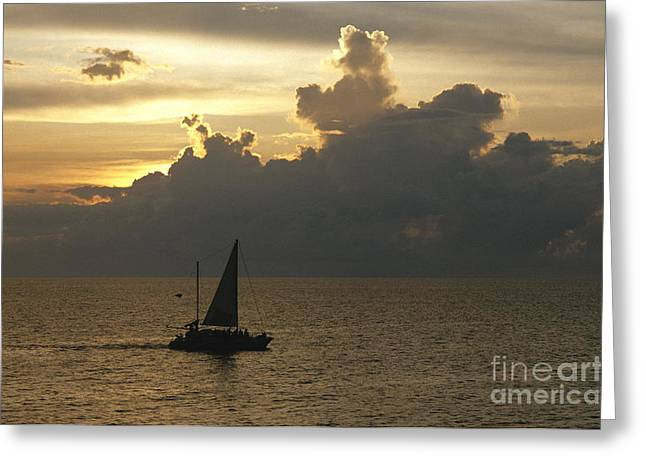 Sailing Ship Greeting Cards - Sailing Negril Greeting Card by Chris Selby