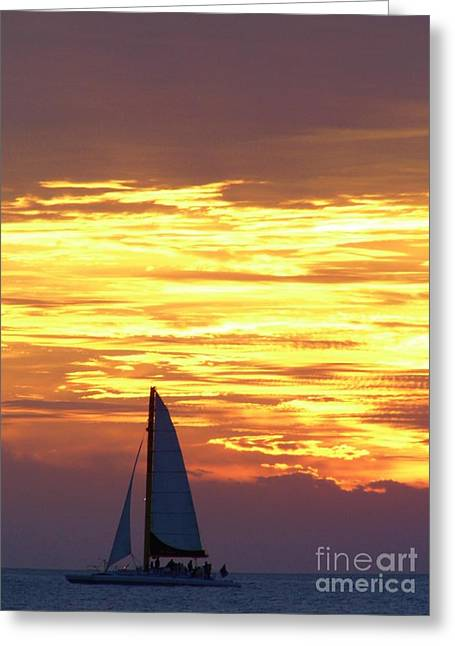 Reflection Of Sun In Clouds Greeting Cards - Sailing Past The Sunset Greeting Card by D Hackett