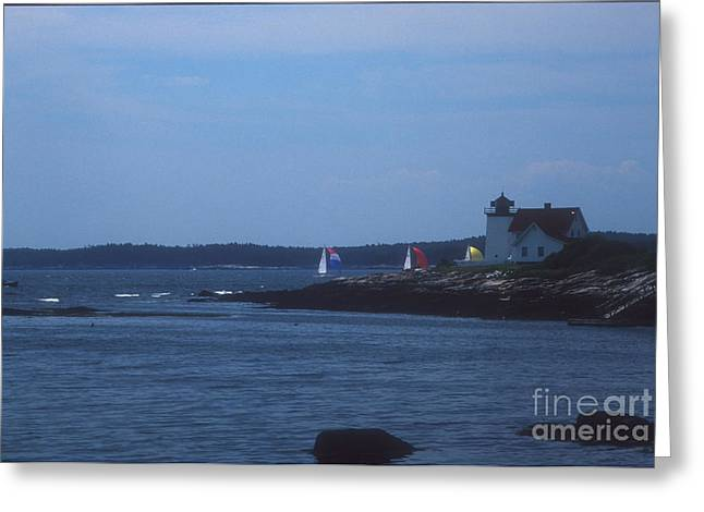 Cape Neddick Greeting Cards - Sailing Regatta by Nubble Light Greeting Card by Darleen Stry