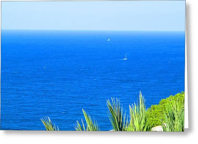 Seacape Greeting Cards - Sailing Sailing Sailing Greeting Card by Tina M Wenger