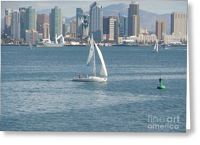 Sailing In San Diego Harbor Greeting Cards - Sailing San Diego Greeting Card by Mary Gonzales Brhel