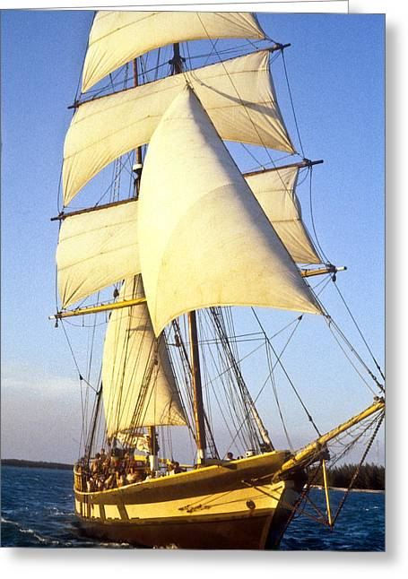 Two Crows Greeting Cards - Sailing ship carribean Greeting Card by Douglas Barnett
