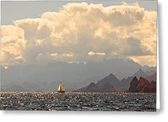 Ocean Art Photography Greeting Cards - Sailing the Sea of Cortez Greeting Card by Kandy Hurley