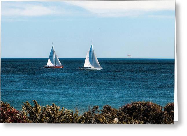 Ocean Scenes Greeting Cards - Sailing Watch Hill RI Greeting Card by Tom Prendergast