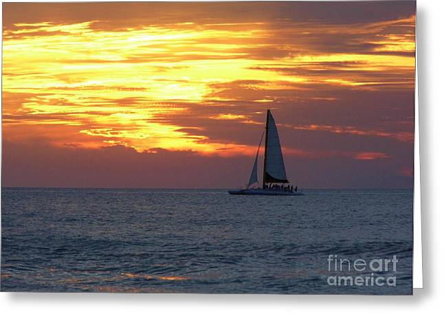 Boats In Reflecting Water Greeting Cards - Sailing with Fire In The Sky Greeting Card by D Hackett