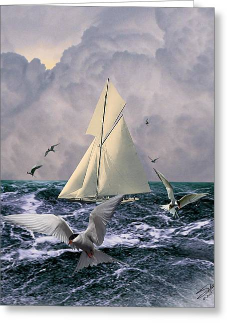 Tern Digital Art Greeting Cards - Sailing with the Terns Greeting Card by Schwartz