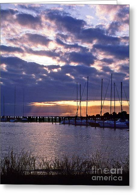 Sailing Boat Greeting Cards - Sailors Delight Greeting Card by Skip Willits