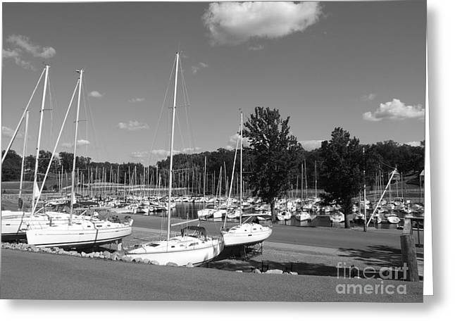 Sailboats Docked Greeting Cards - Sails in Black and white Greeting Card by Brandon Winstead