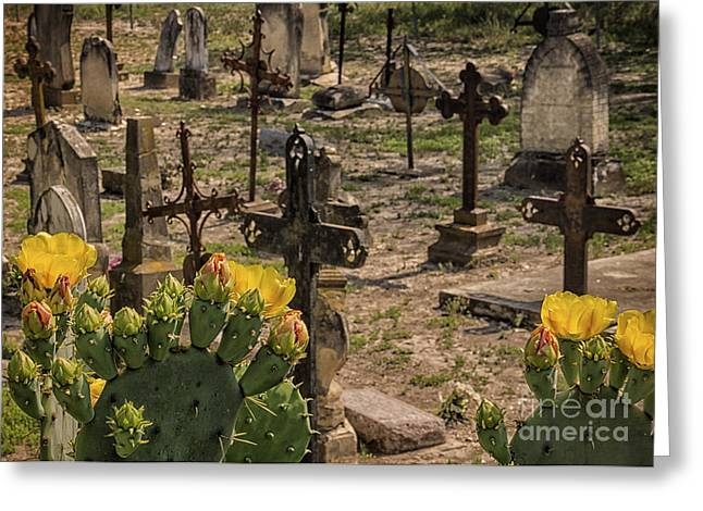 Saint Dominic Greeting Cards - Saint Dominic Cemetery at Old DHanis Texas Greeting Card by Priscilla Burgers