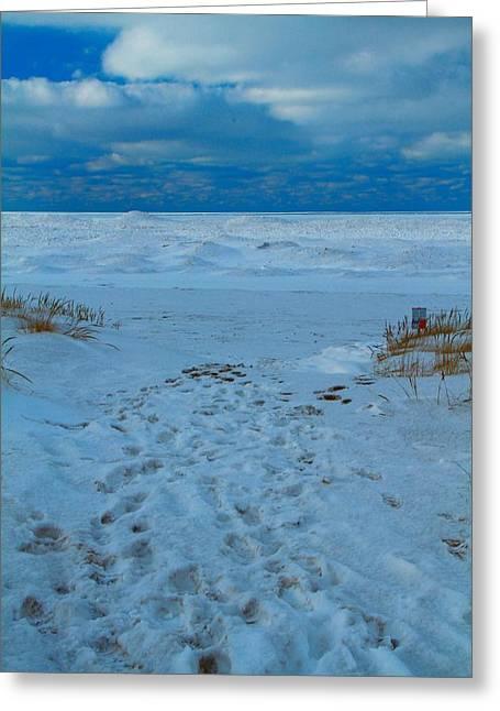 Saint Joseph Michigan Beach In Winter Greeting Card by Dan Sproul