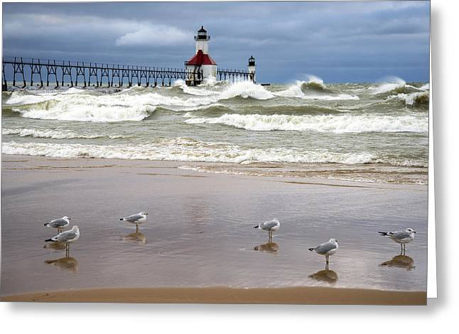 Green Day Greeting Cards - Saint Joseph Michigan Lighthouses Stormy Day at Silver Beach Greeting Card by Sally Rockefeller