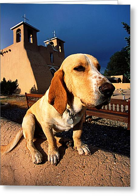 Adobe Greeting Cards - Saint Paco of Taos Greeting Card by Adam  Schallau