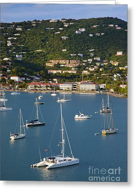 Charlotte Greeting Cards - Saint Thomas Harbor Greeting Card by Brian Jannsen