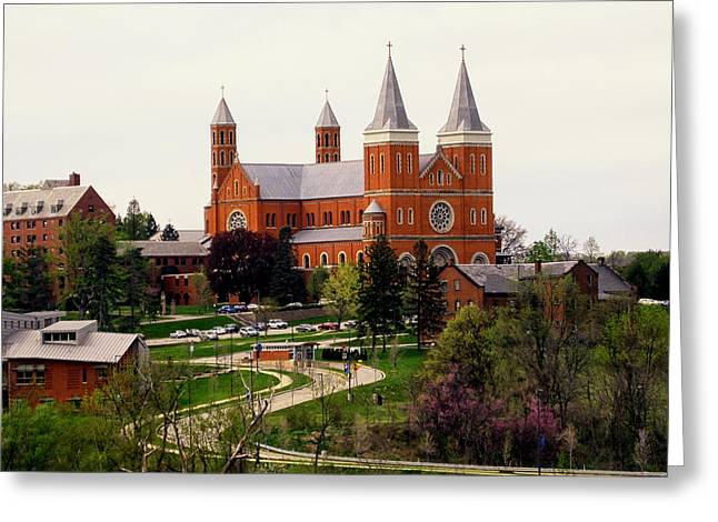 Bearcats Greeting Cards - Saint Vincent College Greeting Card by Nomad Art And  Design