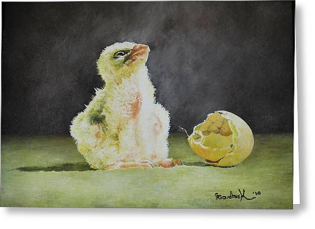 Natuur Greeting Cards - Saker Falcon Chick next to shell Greeting Card by Erna Goudbeek
