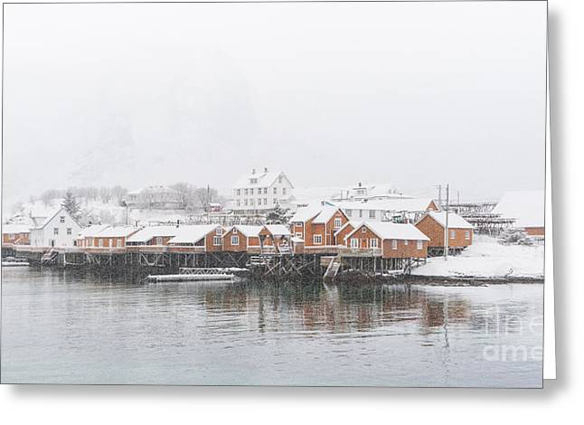 Herring Greeting Cards - White Out Sakrisoy  Greeting Card by Janet Burdon