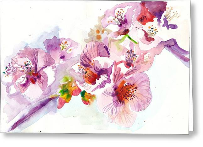 Carmine Greeting Cards - Sakura - Cherry Flowers Watercolor Greeting Card by Tiberiu Soos