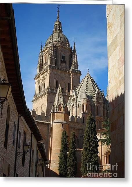 Medieval Temple Greeting Cards - Salamanca Cathedral Greeting Card by Luis Alvarenga
