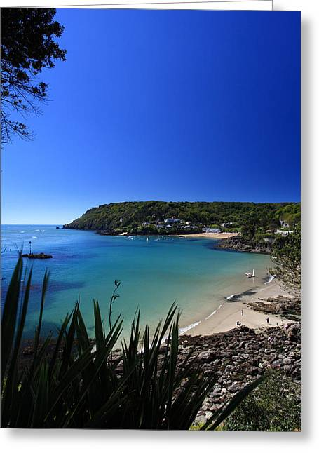 Blue Ria Greeting Cards - Salcombe Beach  Greeting Card by Ollie Taylor