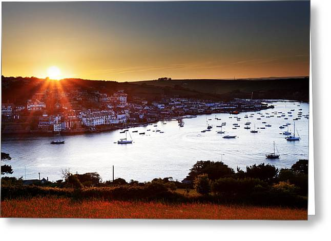 Blue Ria Greeting Cards - Salcombe Greeting Card by Ollie Taylor