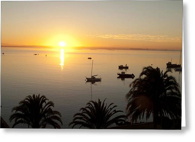 Tom Hudson Greeting Cards - Saldanha Bay Greeting Card by Tom Hudson