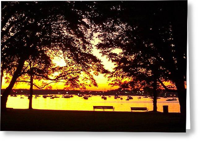 Amusements Greeting Cards - Salem Willows Sunset Greeting Card by Mike Greco
