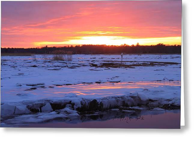 Massachusetts Coast Greeting Cards - Salisbury Beach Marshes Winter Sunset and Snowy Owl Greeting Card by John Burk