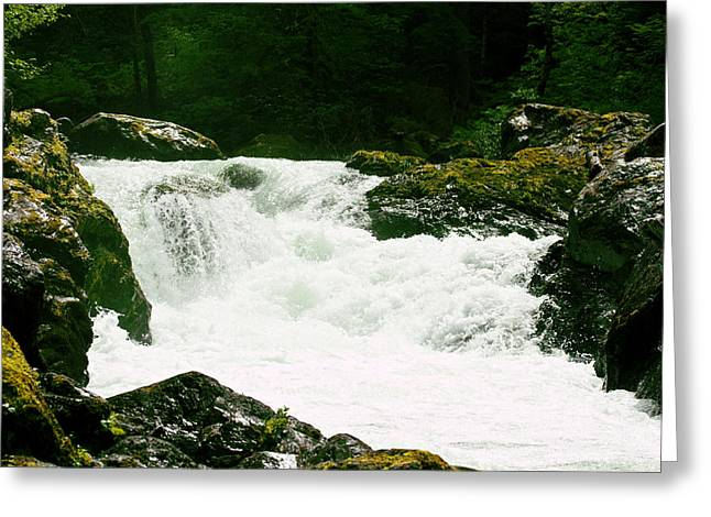 Pacific Northwest Greeting Cards - Salmon Cascades Greeting Card by Marie Jamieson