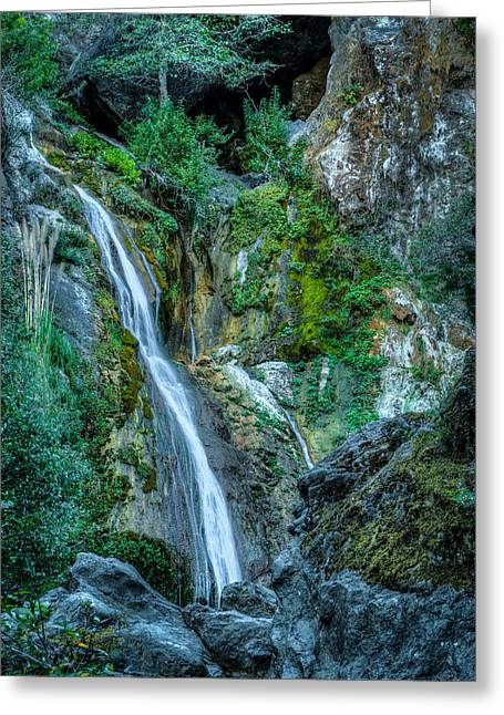 Big Sur California Greeting Cards - Salmon Falls Greeting Card by George Buxbaum
