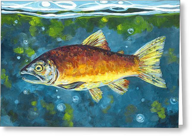 Sockeye Paintings Greeting Cards - Salmon II Greeting Card by Peggy Wilson