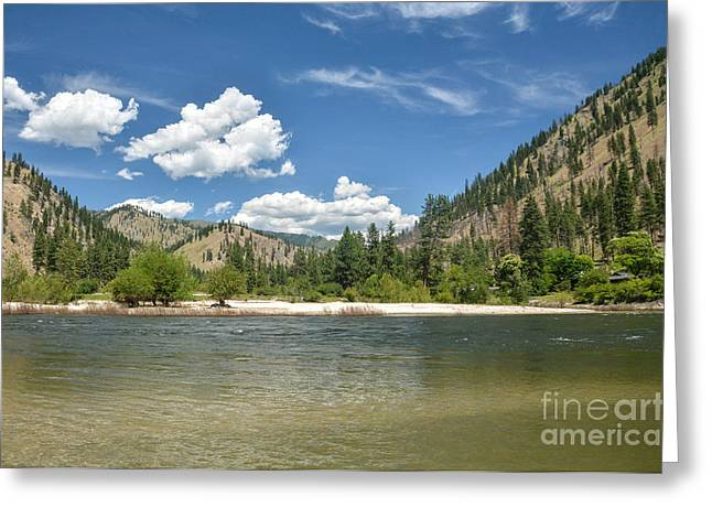 Frank Church River Of No Return Greeting Cards - Salmon River Scenic Greeting Card by Kevin Felts
