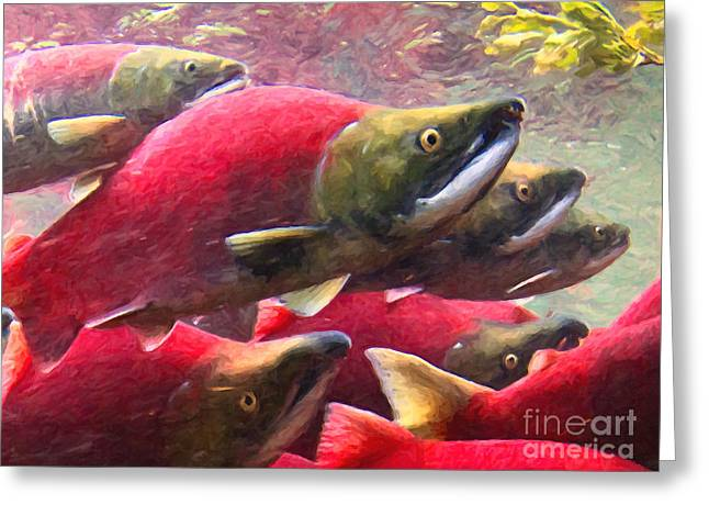 Chinook Salmon Greeting Cards - Salmon Run - Painterly Greeting Card by Wingsdomain Art and Photography