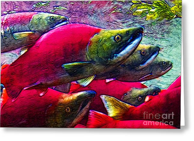 Chinook Salmon Greeting Cards - Salmon Run Greeting Card by Wingsdomain Art and Photography