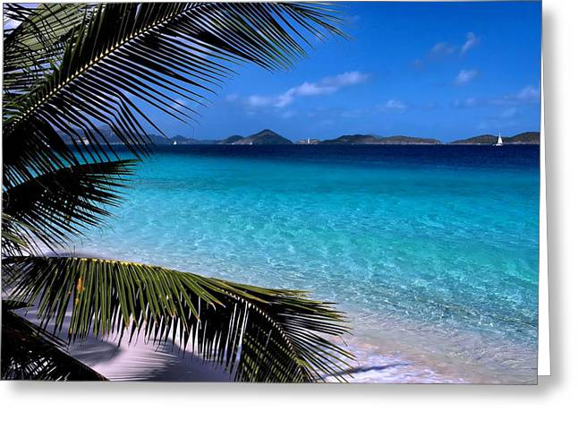 Boat Photographs Greeting Cards - Saloman Beach - St. John Greeting Card by Stephen  Vecchiotti