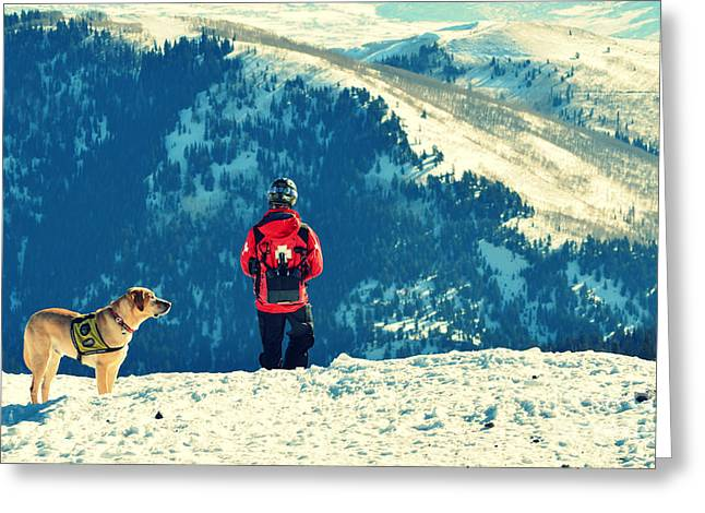 Vida Greeting Cards - Salt Lake City Avalanche Dog and Rescue Team Greeting Card by Patricia Awapara