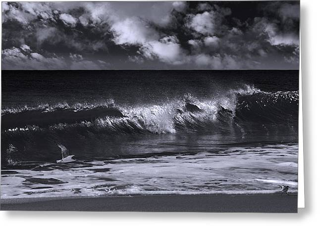Sand Piper Greeting Cards - Salt Life Morning Bw Greeting Card by Laura  Fasulo
