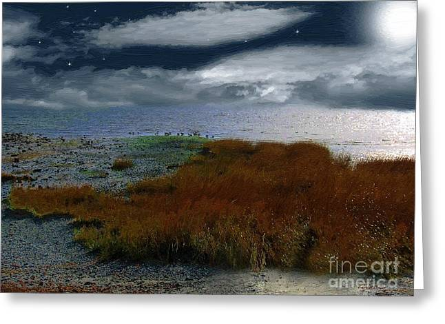 Salt Marsh at the Edge of the Sea Greeting Card by RC DeWinter