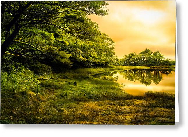March Greeting Cards - Salt Marsh Kittery Maine Greeting Card by Bob Orsillo