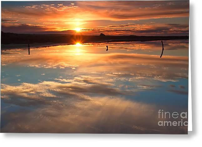 Calm Waters Greeting Cards - Salt Pan Sunrise Greeting Card by Bill  Robinson