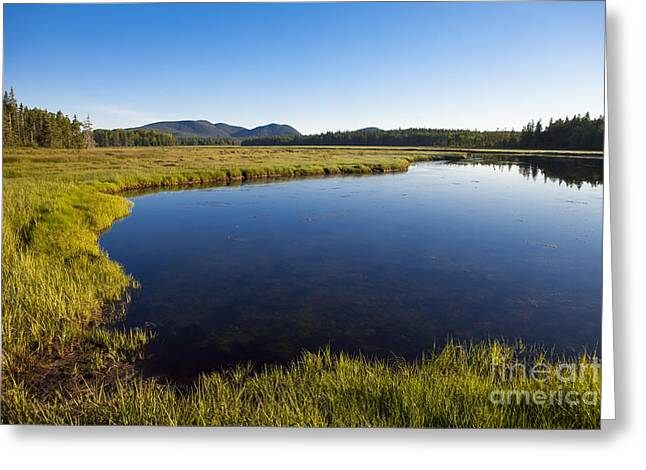 Acadia National Park Photographs Greeting Cards - Salt Pond at Acadia Greeting Card by Diane Diederich